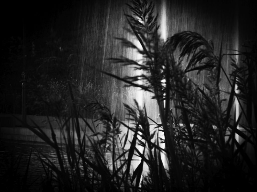 Photography_DARK-REVERIE-BW